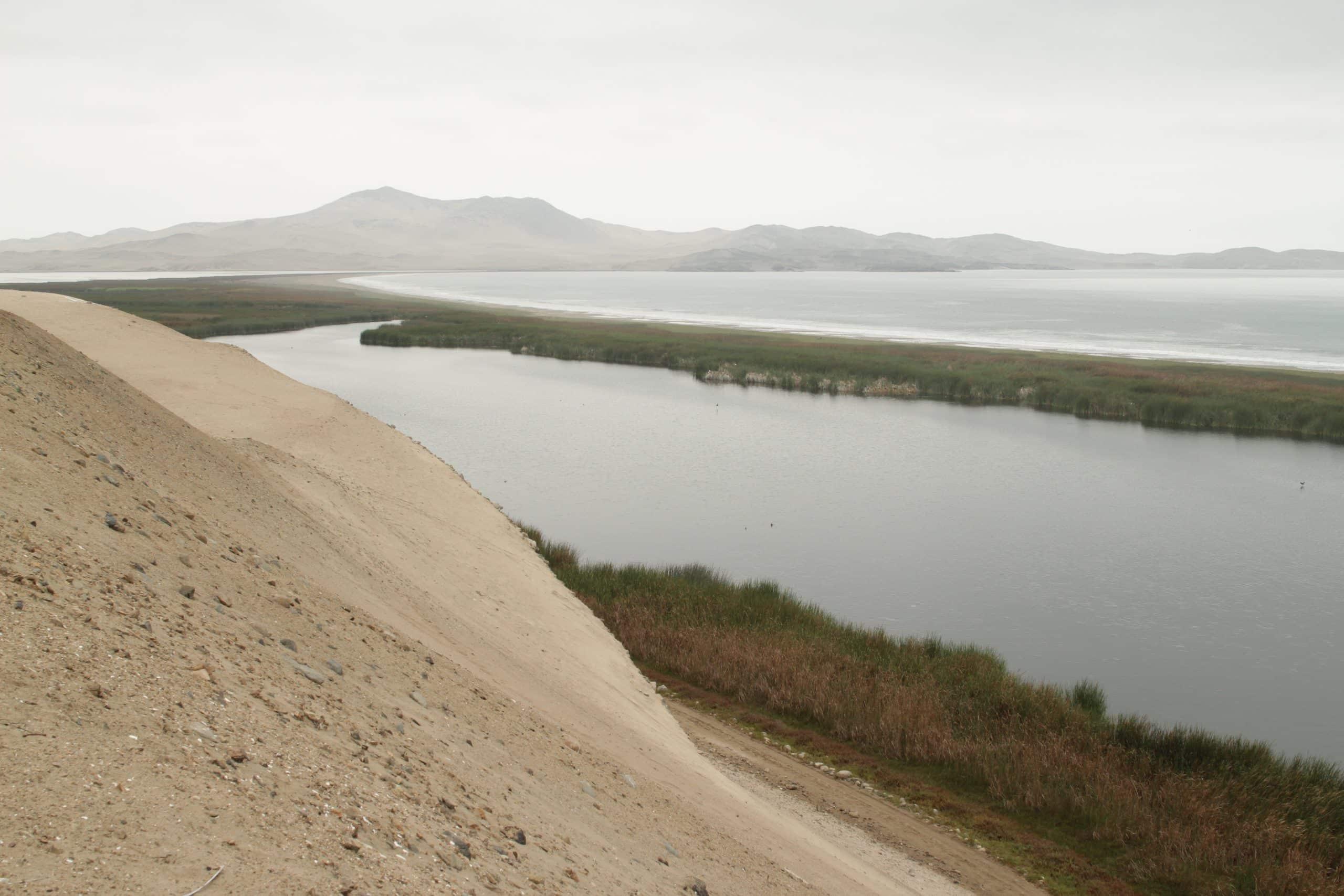 Paisaje del desierto: Albufera de Medio Mundo (Lima, Perú). Desert landscape: Albufera de Medio Mundo (Lima, Perú).
